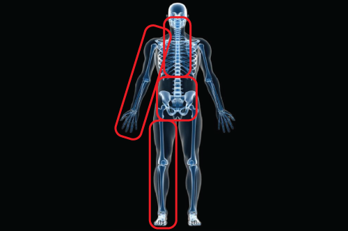 Body Regions: Biomechanical Testing, MAR and IAR