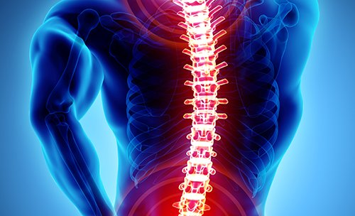 Back Pain Literature: What Have We Learned?